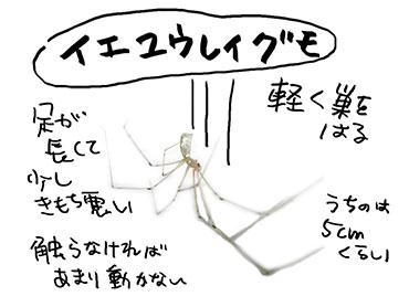 f:id:mochikosan:20170629040332j:plain