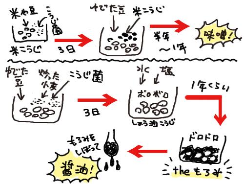 f:id:mochikosan:20181106222653j:plain