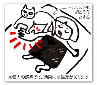 老猫を黙らせるの図