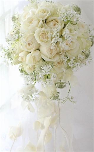 f:id:mochikowedding:20161214220509j:image