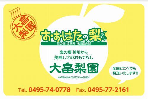 埼玉神川産人気おすすめ梨直売所口コミ評判大畠農園梨狩りお土産購入
