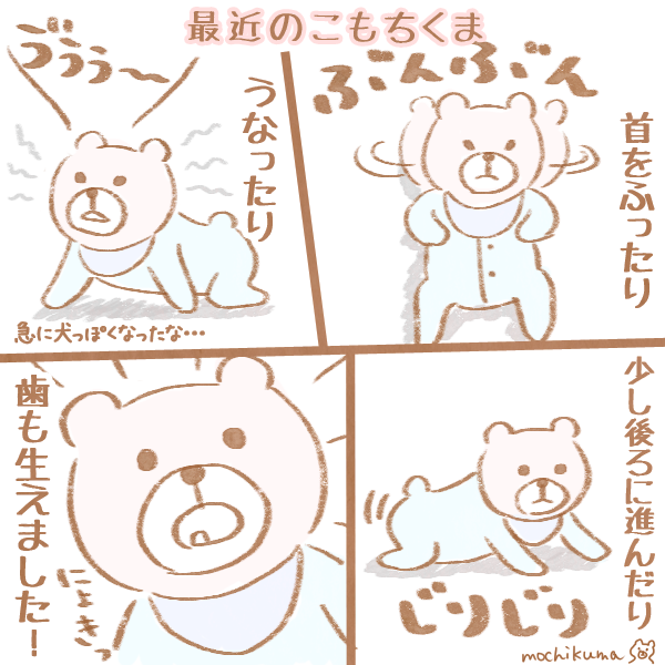 f:id:mochikuma:20161207005048p:plain