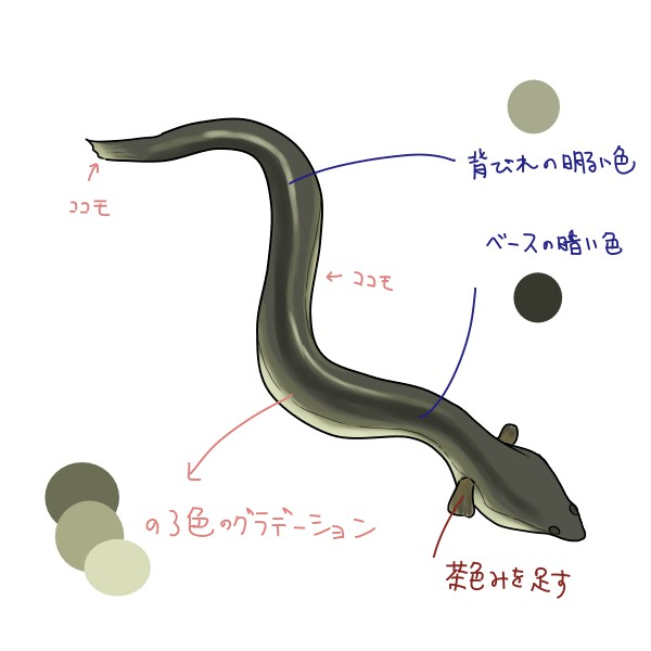 f:id:mochimarublognet:20210715102948j:plain