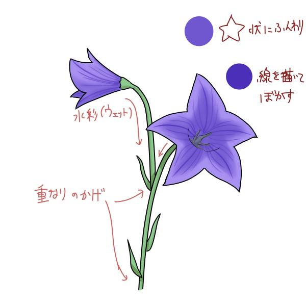 f:id:mochimarublognet:20210921102912j:plain