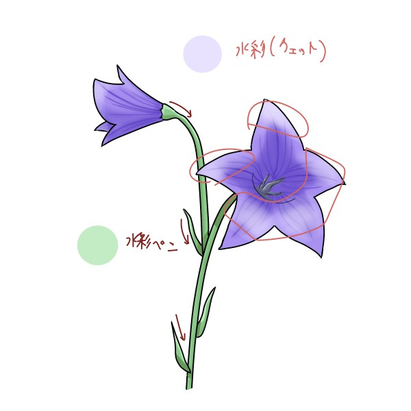 f:id:mochimarublognet:20210921102915j:plain