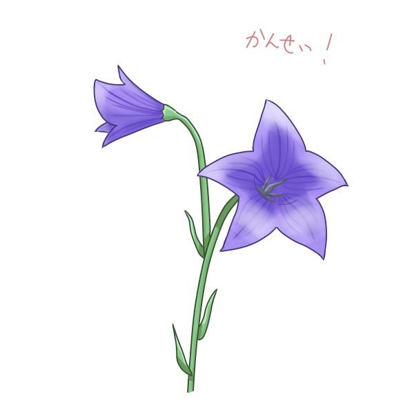 f:id:mochimarublognet:20210921102924j:plain
