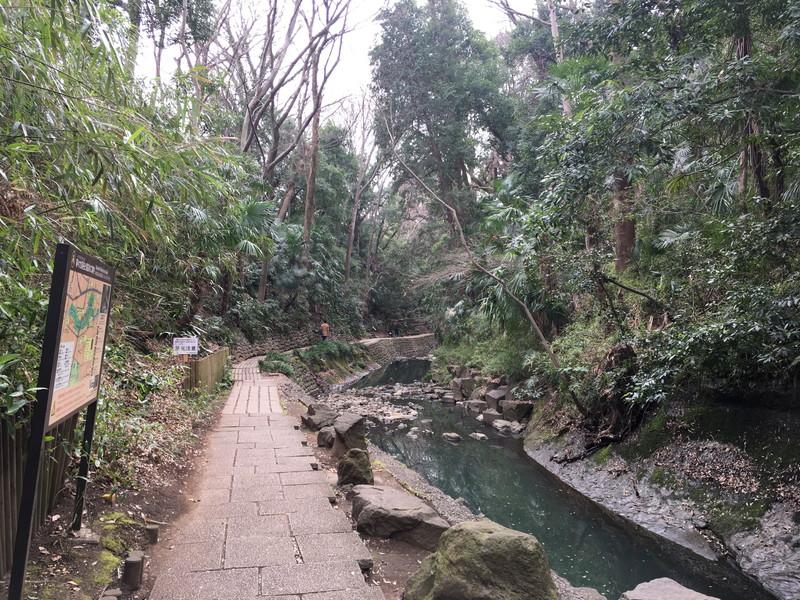 等々力渓谷へのアクセスと見どころ   自然の癒しと等々力不動尊