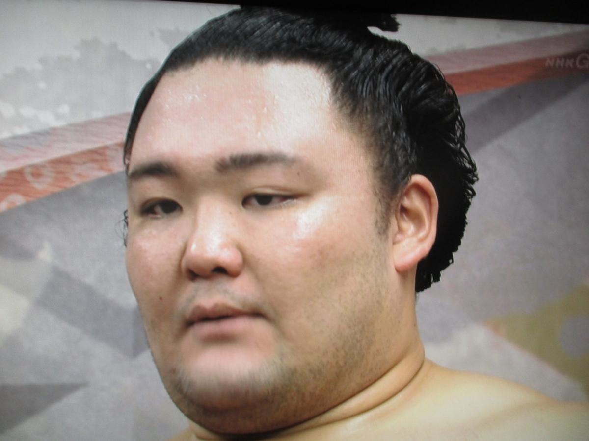 f:id:mochizuki336:20190525180322j:image:w360:left