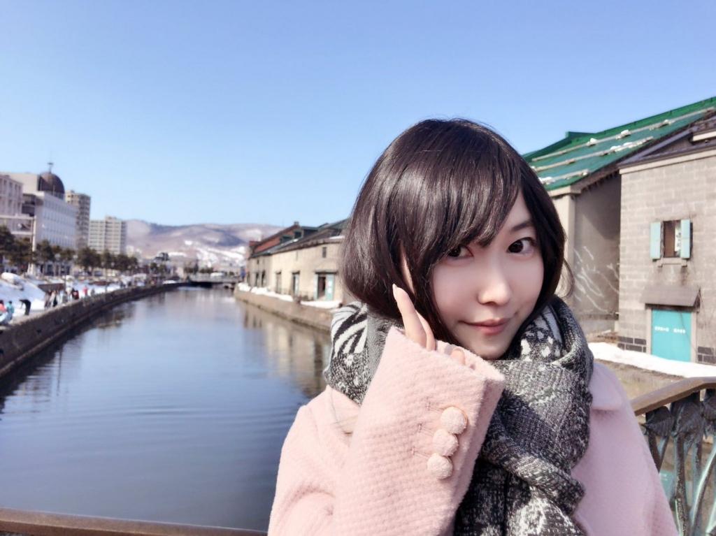 f:id:mochizuki_p:20170502231402j:plain