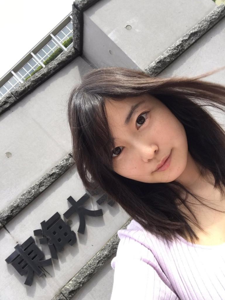 f:id:mochizuki_p:20170623223224j:plain