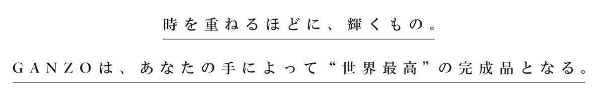 f:id:mocobuta:20200310224307p:plain