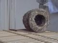 つぼ巣とプーちゃん