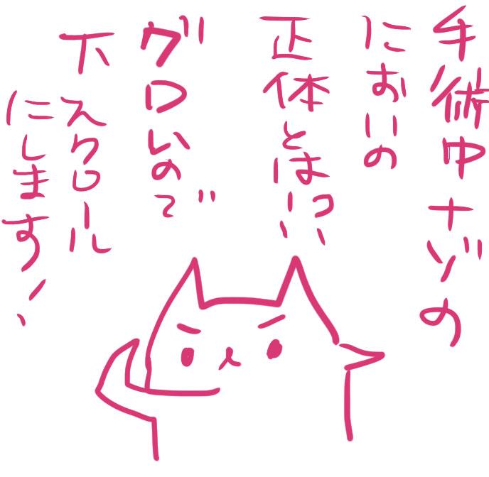 f:id:moeacin:20160817161536j:plain