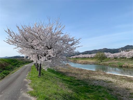 f:id:moesakurai:20210404194027j:image
