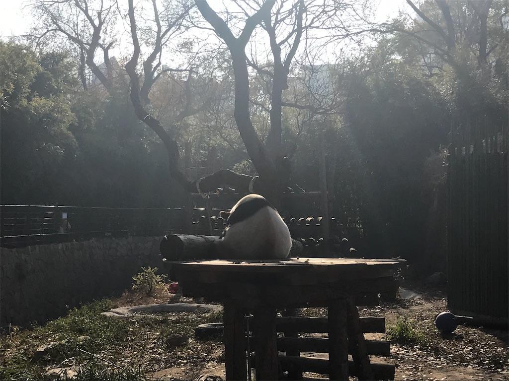 f:id:moeyo-fufu:20181126235936j:image