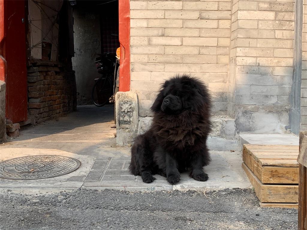 f:id:moeyo-fufu:20190106161143j:image