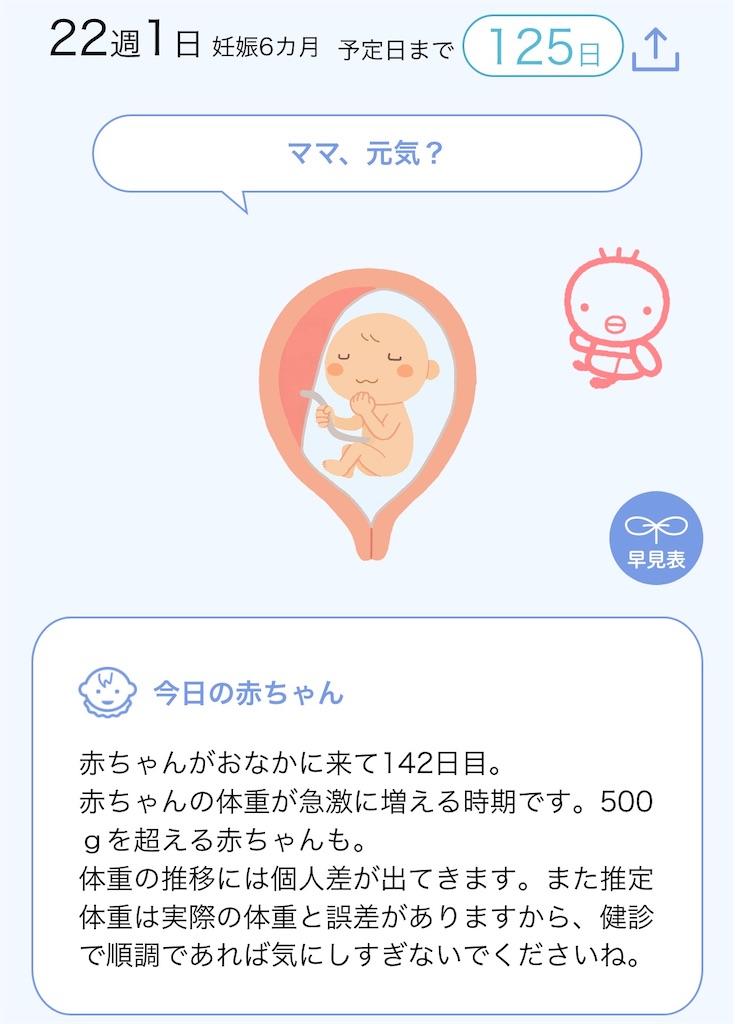 f:id:moeyo-fufu:20200725234044j:image