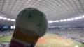 20170826西武ドーム野球観戦オフ