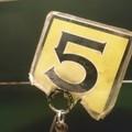 今日の番号札