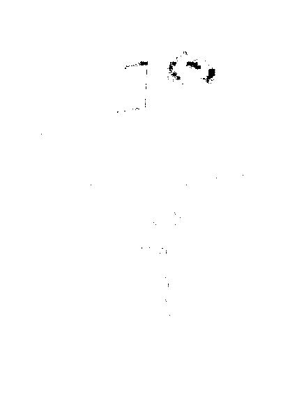 ガリィ 音波視角