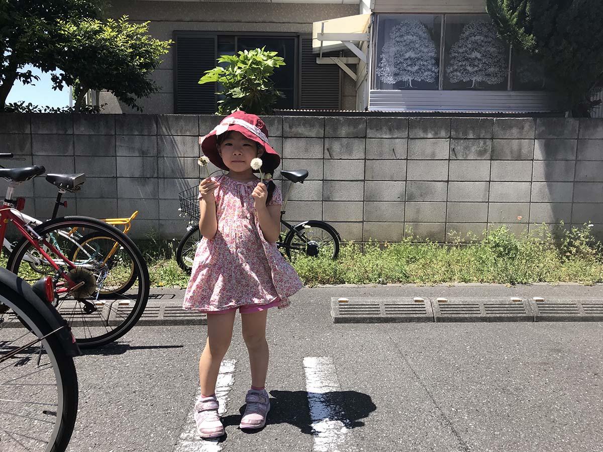 f:id:mogami74:20180428111740j:plain
