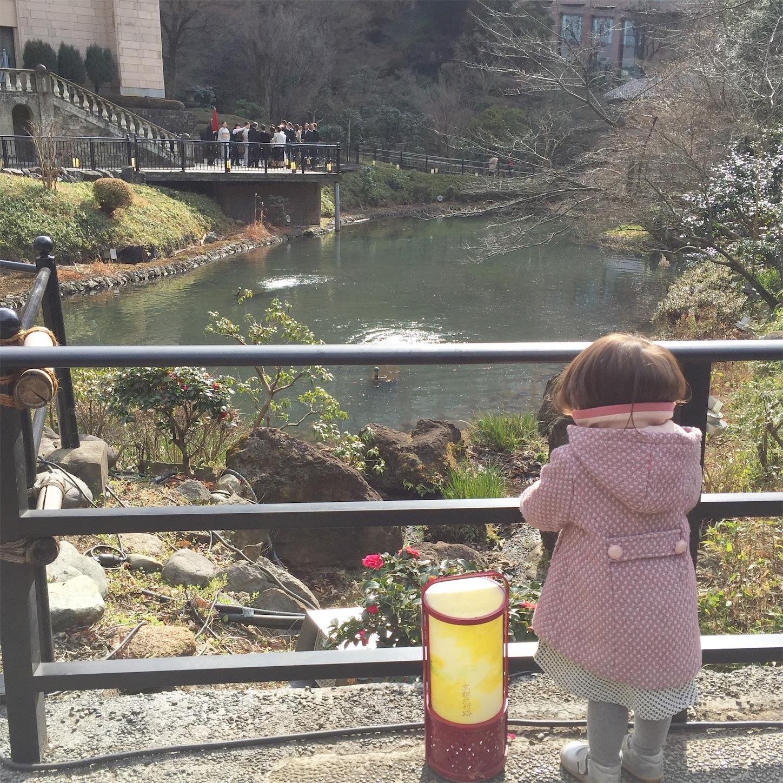 椿山荘のお庭