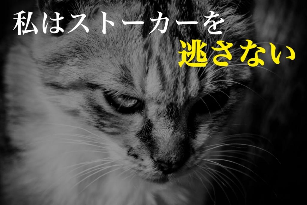 f:id:mogupuchi_home:20170711181059j:plain