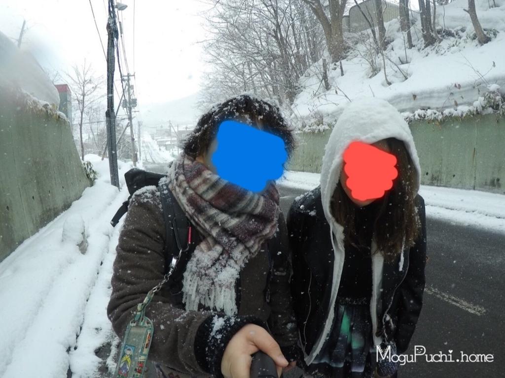 f:id:mogupuchi_home:20170715163805j:plain