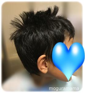 f:id:moguramama:20180108211638j:plain