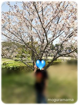 f:id:moguramama:20180402165633j:plain