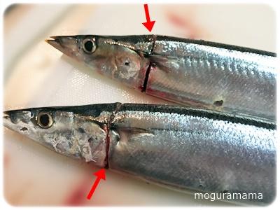 秋刀魚に切り込み
