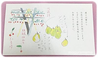 さくらんぼ「佐藤錦」