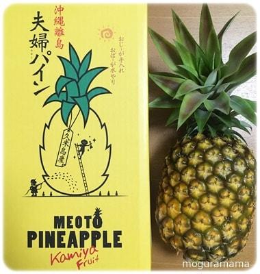 沖縄県産パイナップル