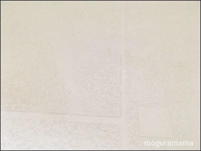 浴室の床の黒ずみ