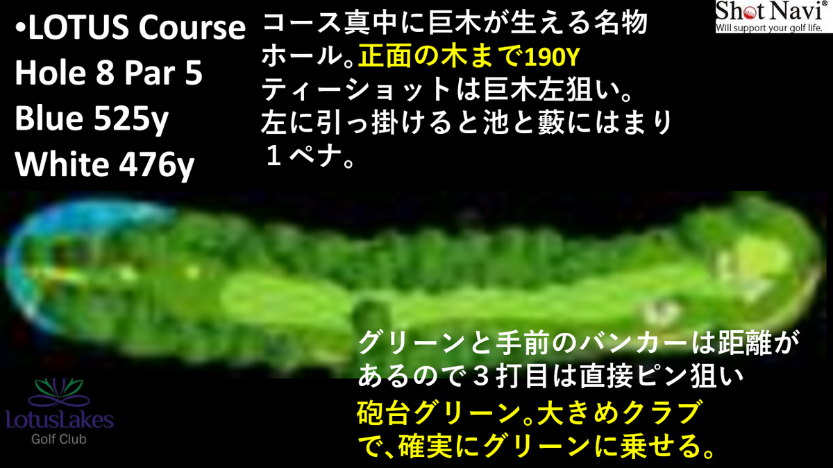 f:id:moguraya0622:20200603001907p:plain