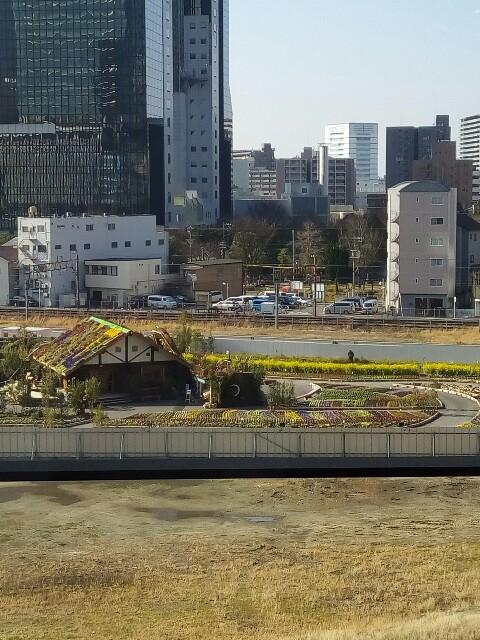 f:id:moiharamaki:20170110151551j:image