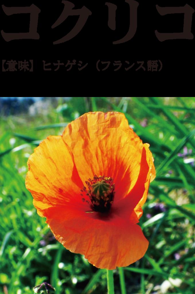 f:id:mojiru:20170112083331p:plain