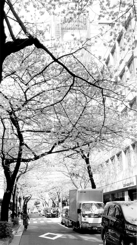 f:id:mojiru:20180324185937j:image