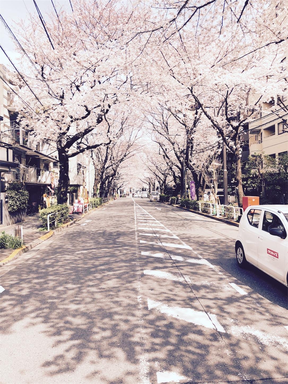 f:id:mojiru:20180324190043j:image