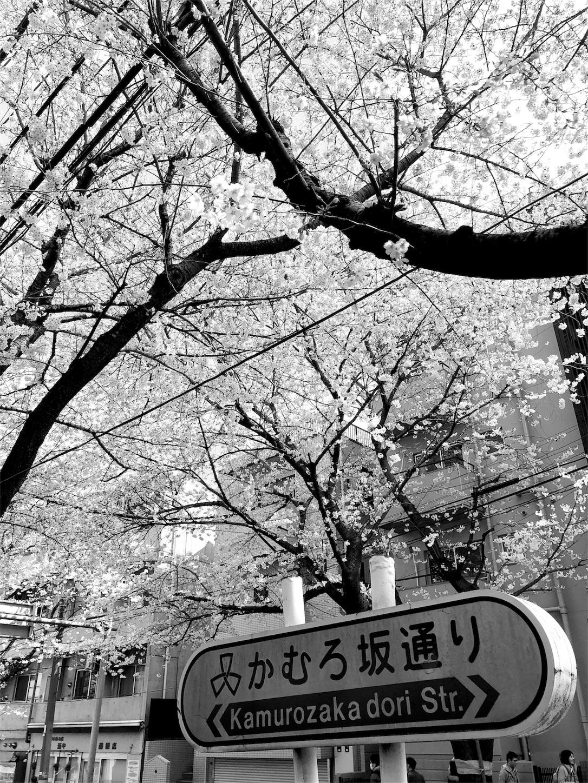 f:id:mojiru:20180324190145j:image