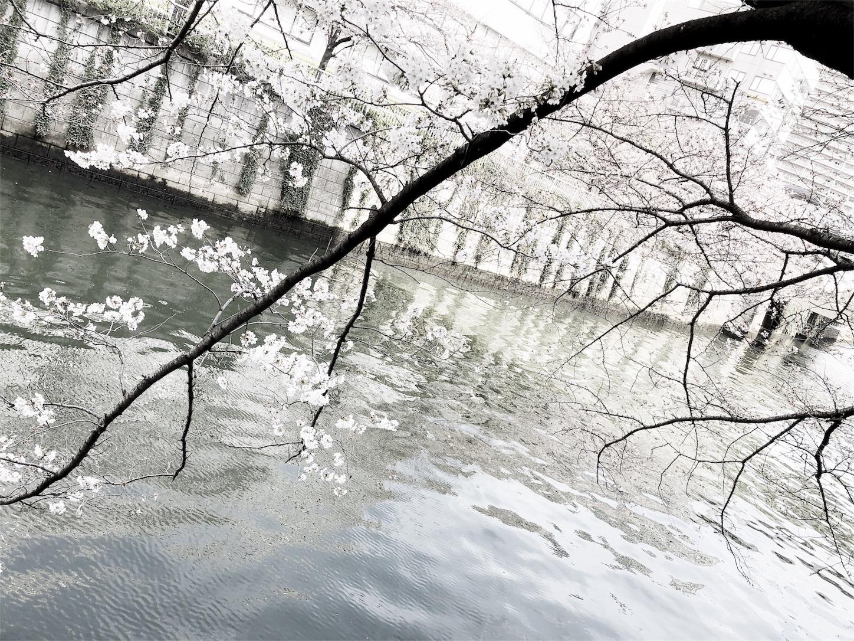 f:id:mojiru:20180324190246j:image