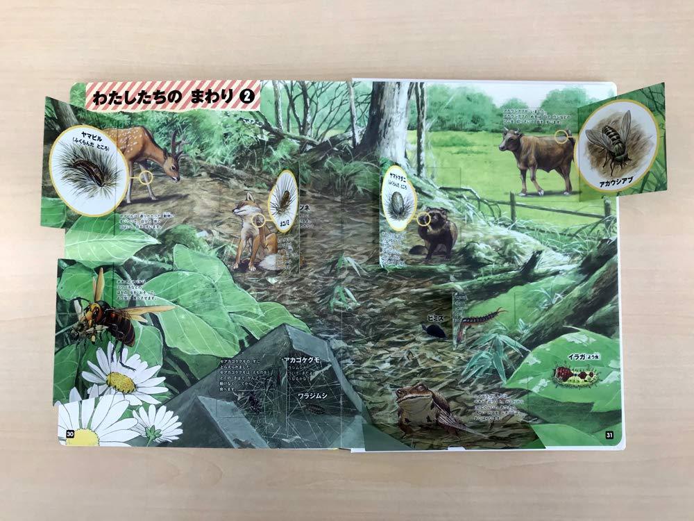 f:id:mojiru:20181211085036j:plain