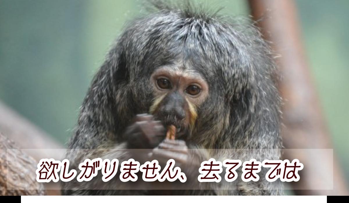 f:id:mojiru:20190528164346p:plain