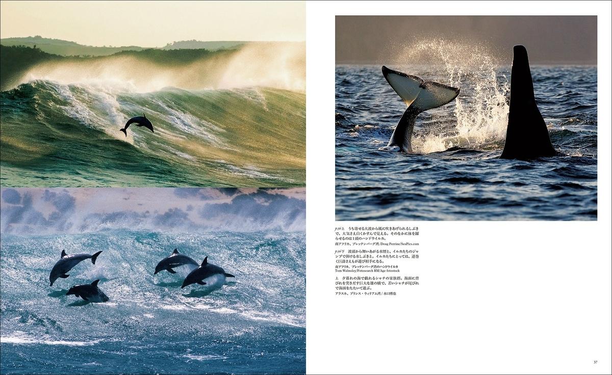 f:id:mojiru:20190625090050j:plain