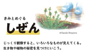 f:id:mojiru:20190725090136p:plain