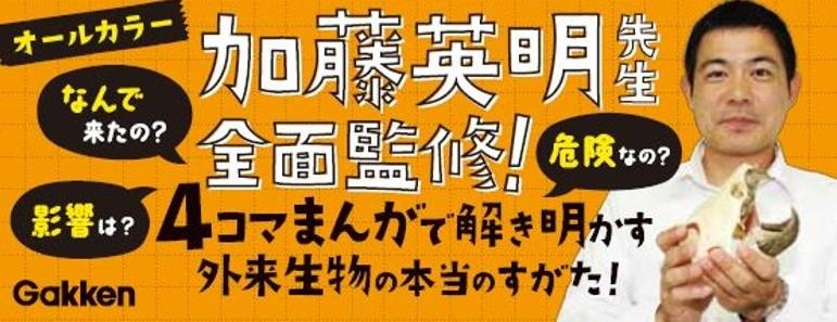 f:id:mojiru:20190729082228j:plain