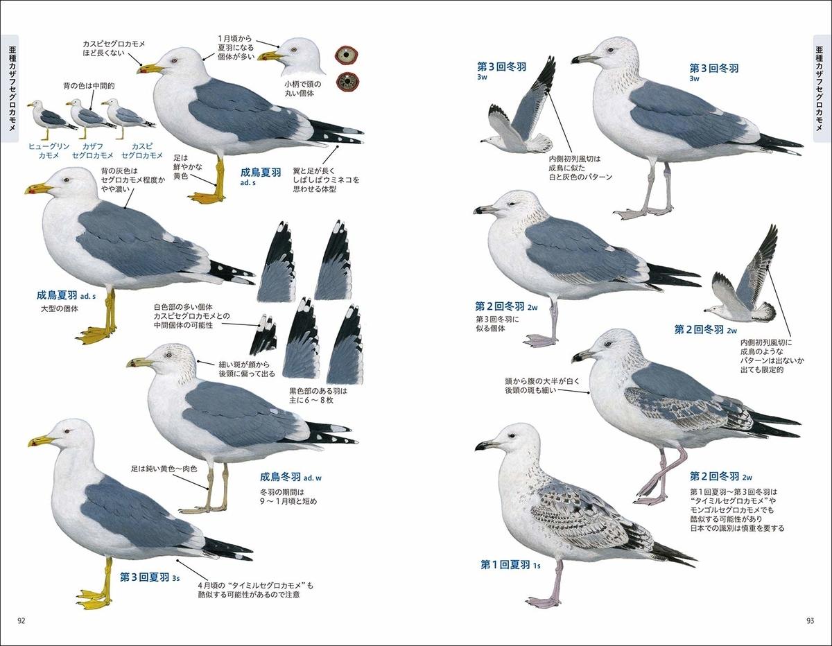 f:id:mojiru:20191106084321j:plain