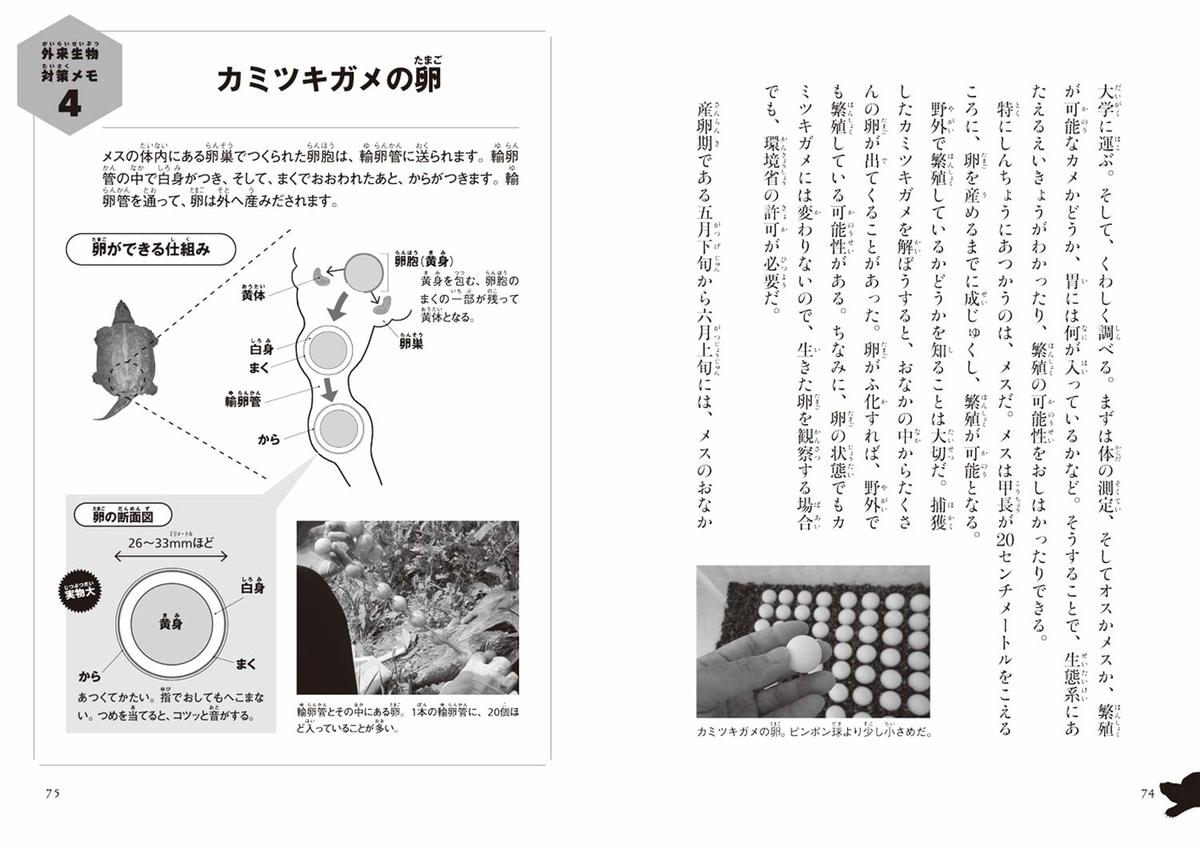 f:id:mojiru:20191106085947j:plain