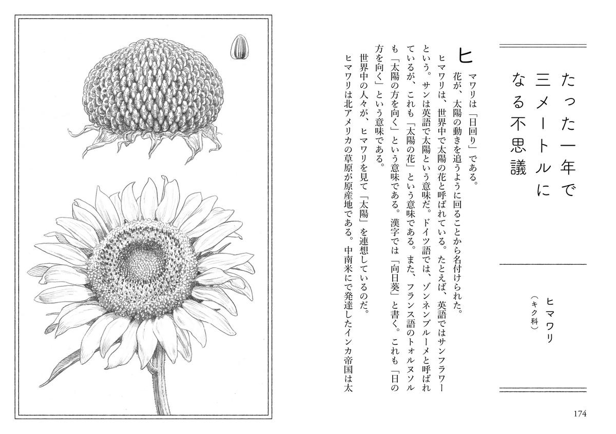 f:id:mojiru:20200430091922j:plain