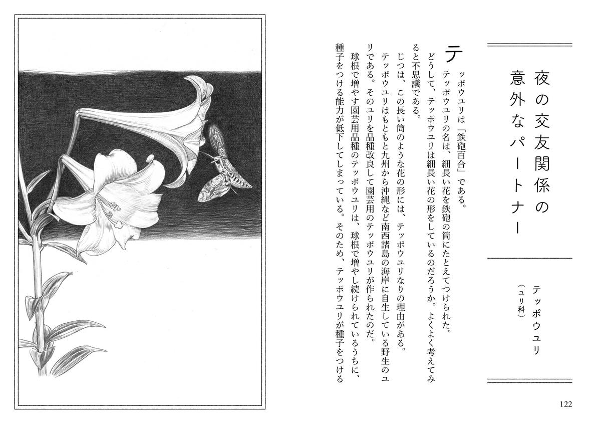 f:id:mojiru:20200430091934j:plain